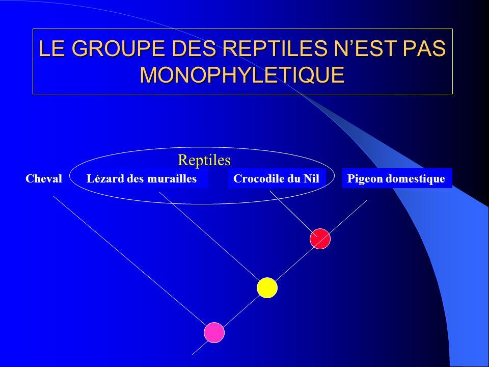 LE GROUPE DES REPTILES N'EST PAS MONOPHYLETIQUE