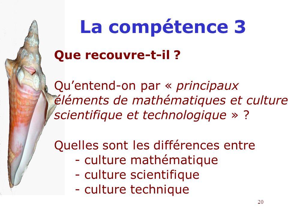 La compétence 3 Que recouvre-t-il