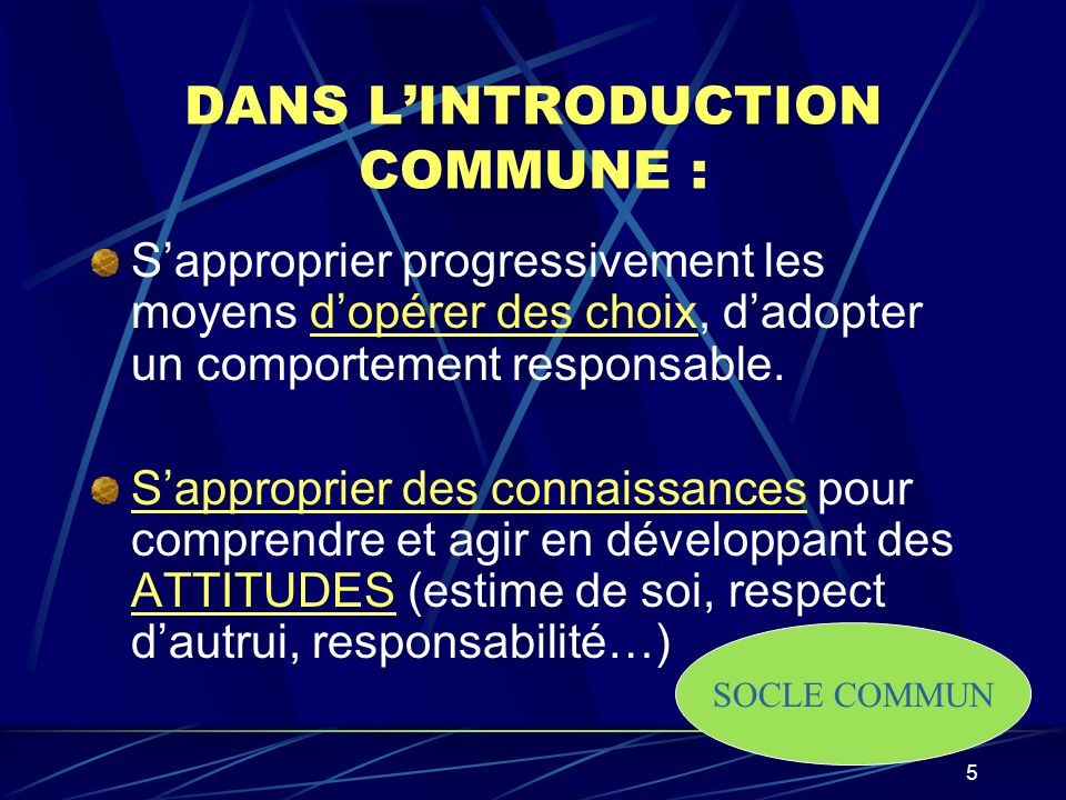 DANS L'INTRODUCTION COMMUNE :