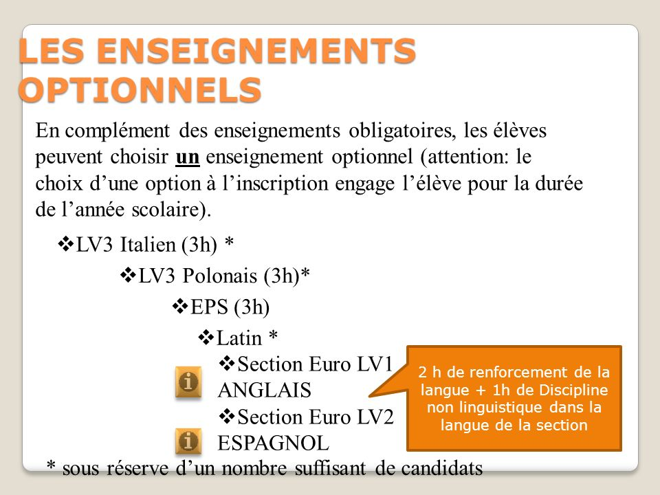 LES ENSEIGNEMENTS OPTIONNELS