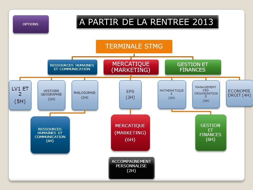 A PARTIR DE LA RENTREE 2013 TERMINALE STMG MERCATIQUE (MARKETING)