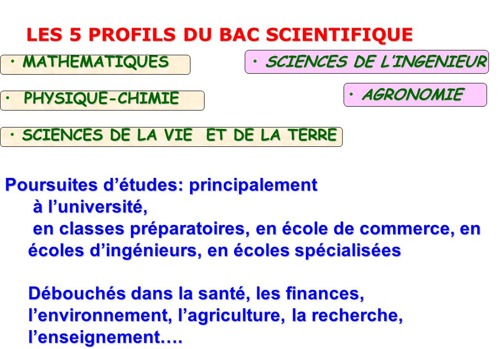 LES 5 PROFILS DU BAC SCIENTIFIQUE