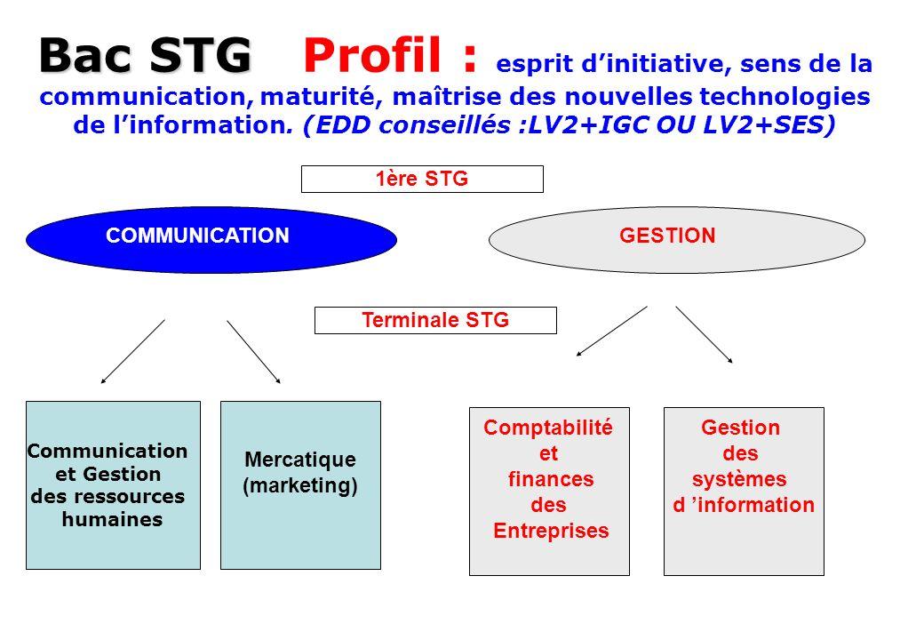 Bac STG Profil : esprit d'initiative, sens de la communication, maturité, maîtrise des nouvelles technologies de l'information. (EDD conseillés :LV2+IGC OU LV2+SES)