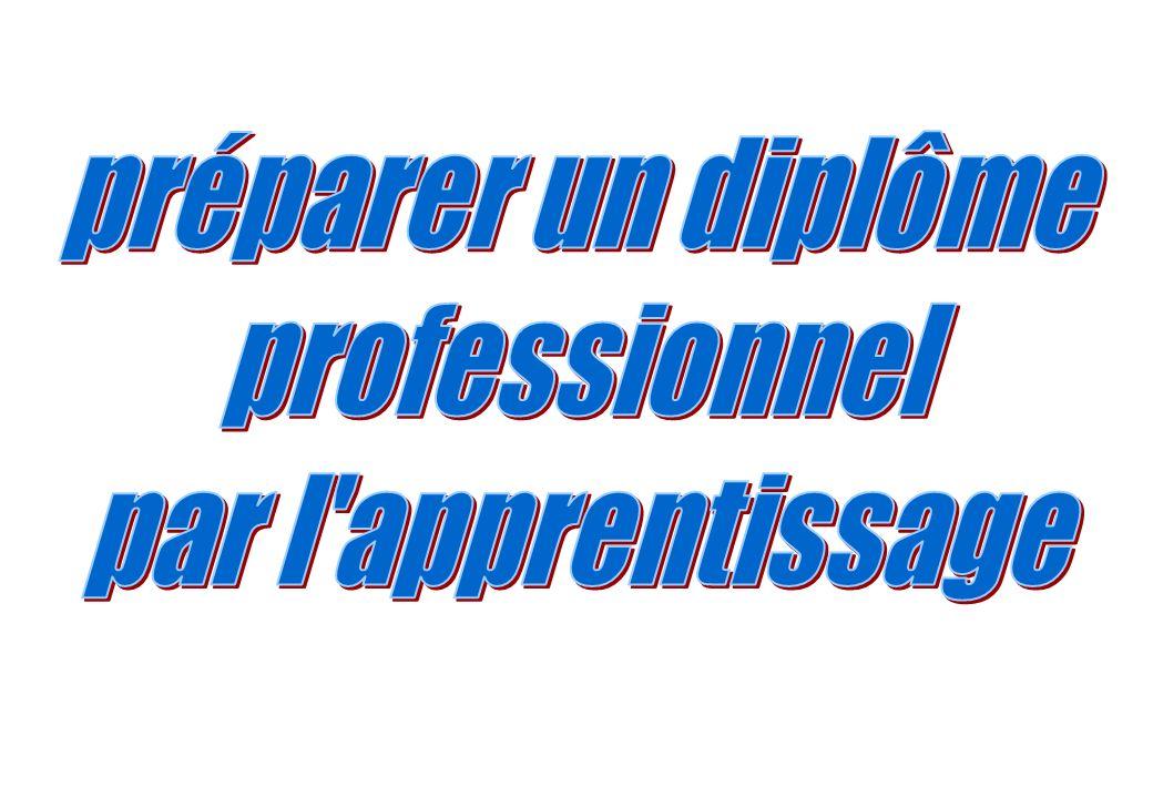 préparer un diplôme professionnel par l apprentissage