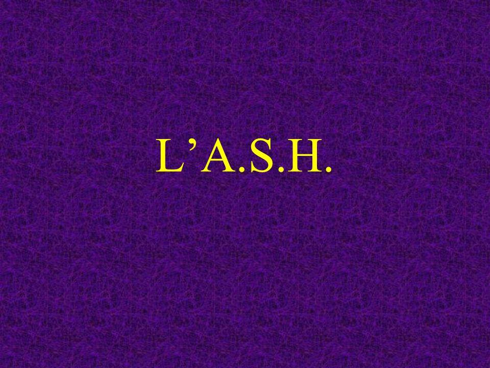L'A.S.H.