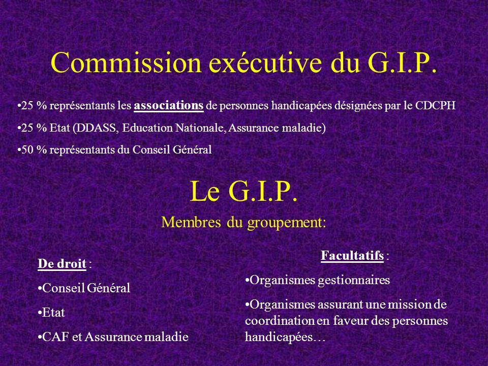 Commission exécutive du G.I.P.