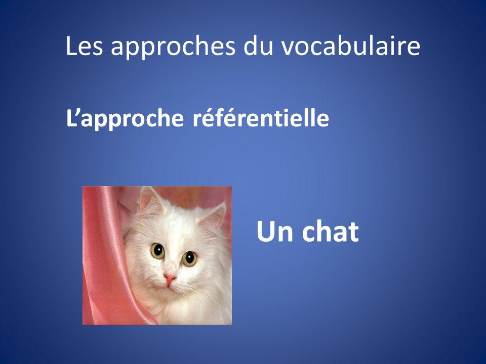 Les approches du vocabulaire