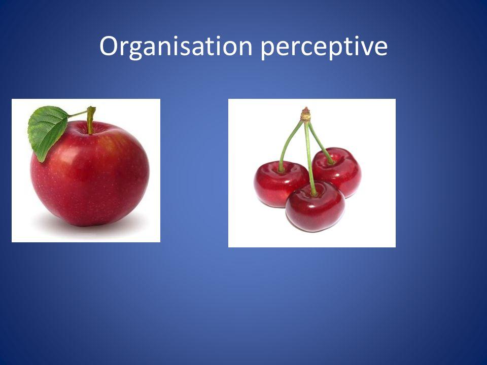 Organisation perceptive