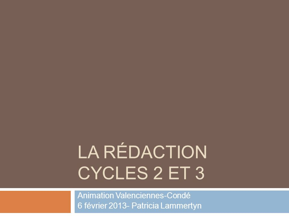 Animation Valenciennes-Condé 6 février 2013- Patricia Lammertyn