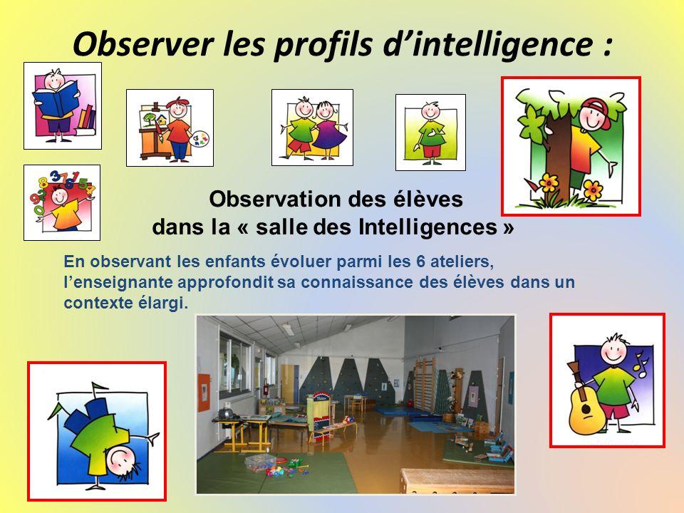 Observer les profils d'intelligence :