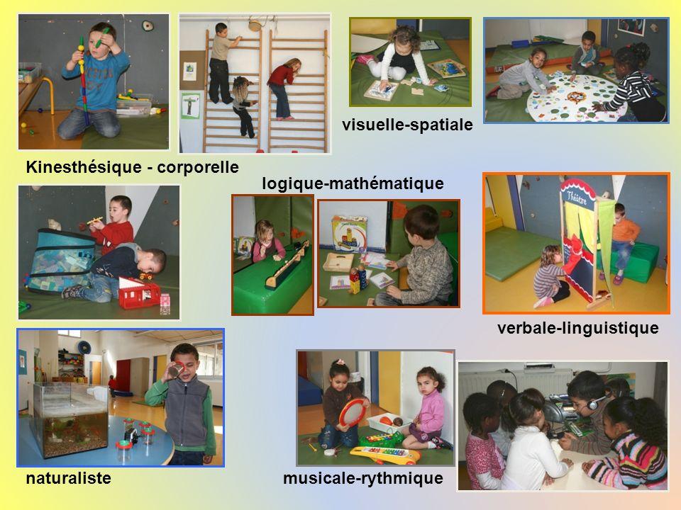 visuelle-spatiale Kinesthésique - corporelle. logique-mathématique. verbale-linguistique. naturaliste.