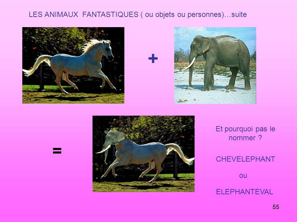 + = LES ANIMAUX FANTASTIQUES ( ou objets ou personnes)…suite