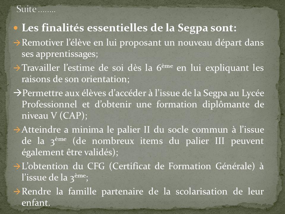 Les finalités essentielles de la Segpa sont: