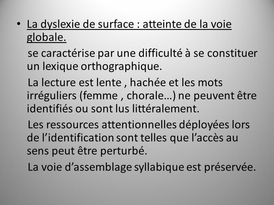 La dyslexie de surface : atteinte de la voie globale.