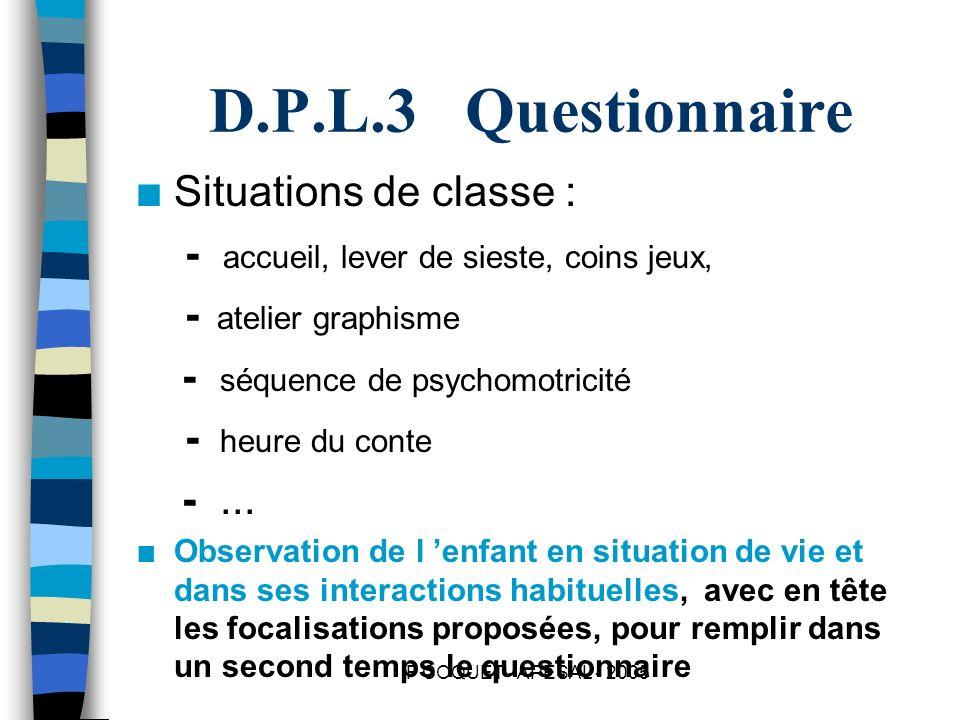 D.P.L.3 Questionnaire Situations de classe :