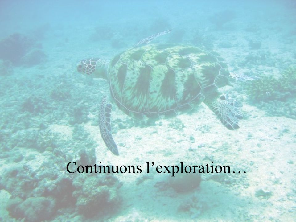 Continuons l'exploration…