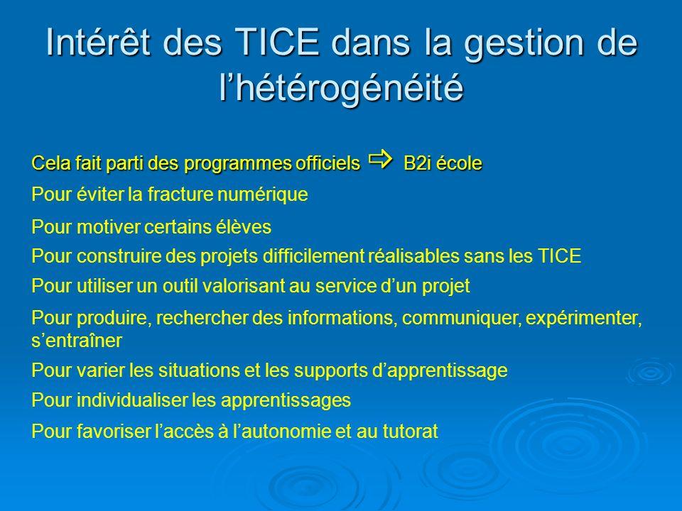 Intérêt des TICE dans la gestion de l'hétérogénéité
