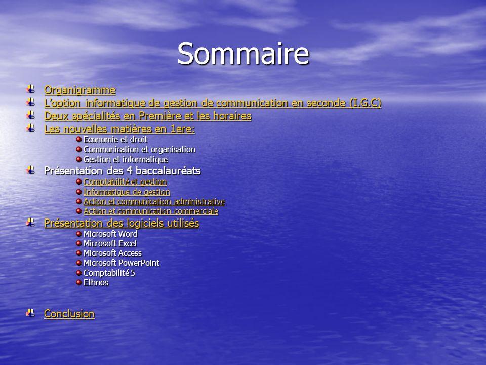 Sommaire Organigramme