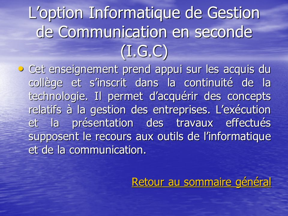 L'option Informatique de Gestion de Communication en seconde (I.G.C)