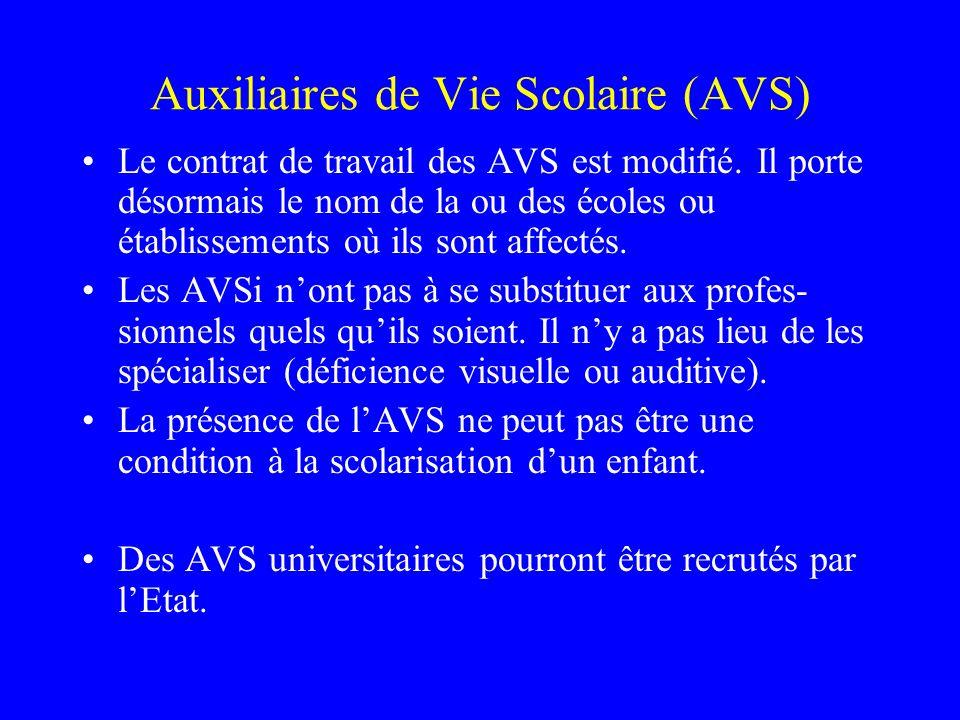 Auxiliaires de Vie Scolaire (AVS)