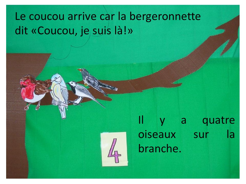 Le coucou arrive car la bergeronnette dit «Coucou, je suis là!»