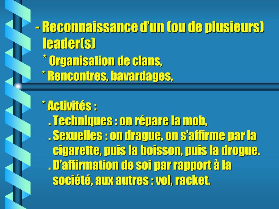 - Reconnaissance d'un (ou de plusieurs) leader(s)