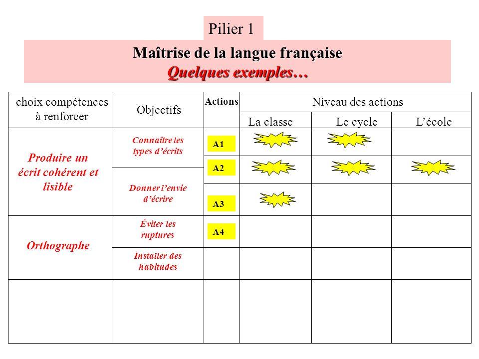Maîtrise de la langue française Quelques exemples…
