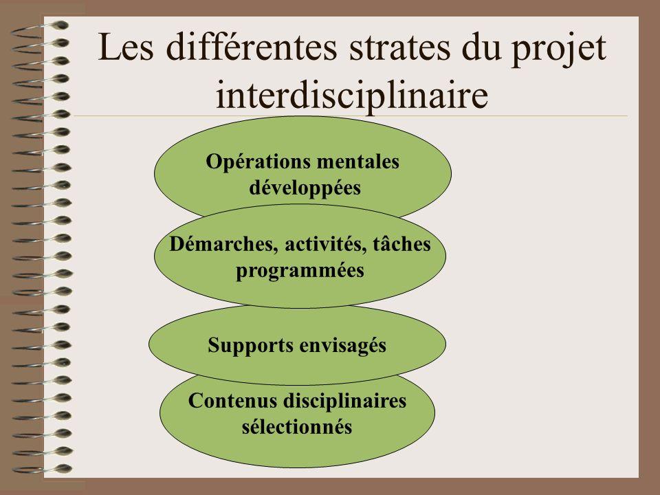Les différentes strates du projet interdisciplinaire