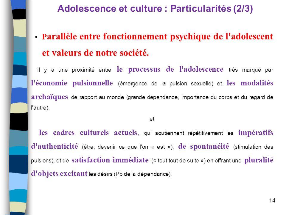 Adolescence et culture : Particularités (2/3)