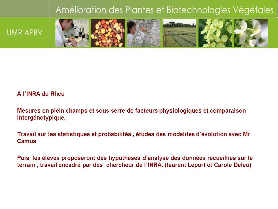 A l'INRA du RheuMesures en plein champs et sous serre de facteurs physiologiques et comparaison intergénotypique.