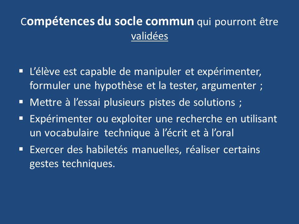 Compétences du socle commun qui pourront être validées