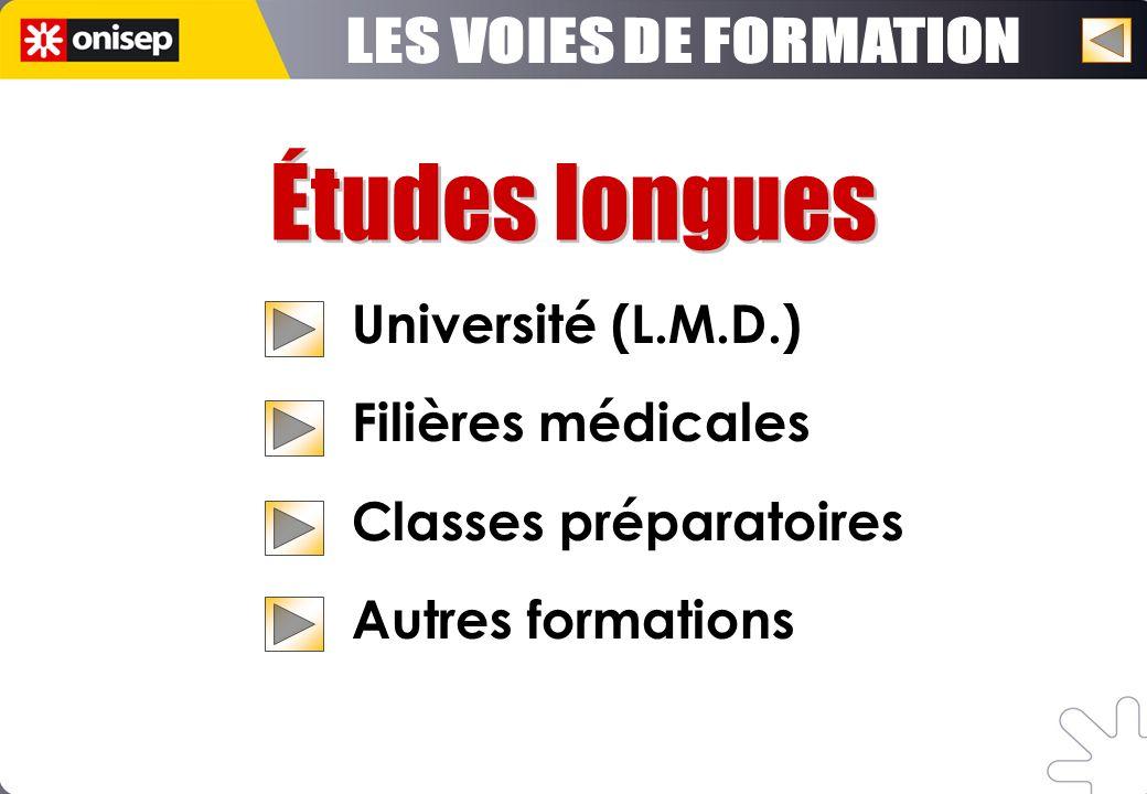 Études longues LES VOIES DE FORMATION Université (L.M.D.)
