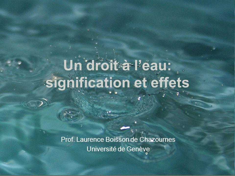 Un droit à l'eau: signification et effets