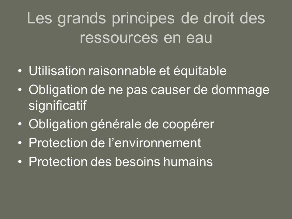 Les grands principes de droit des ressources en eau