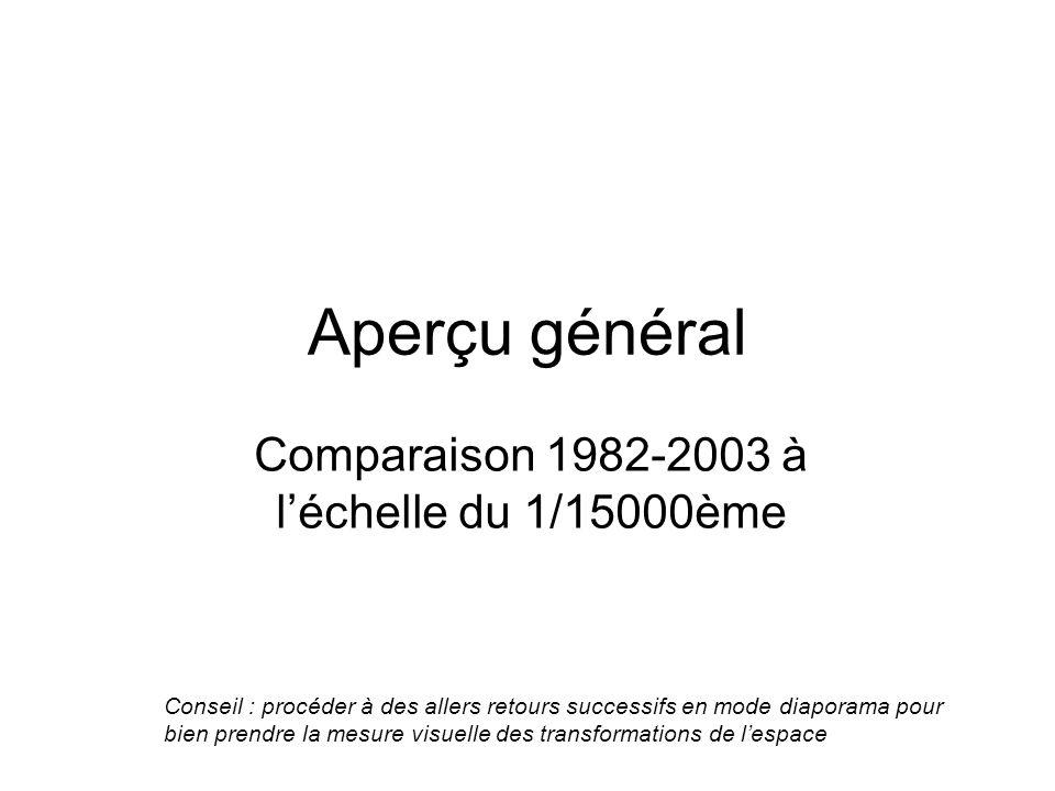 Comparaison 1982-2003 à l'échelle du 1/15000ème