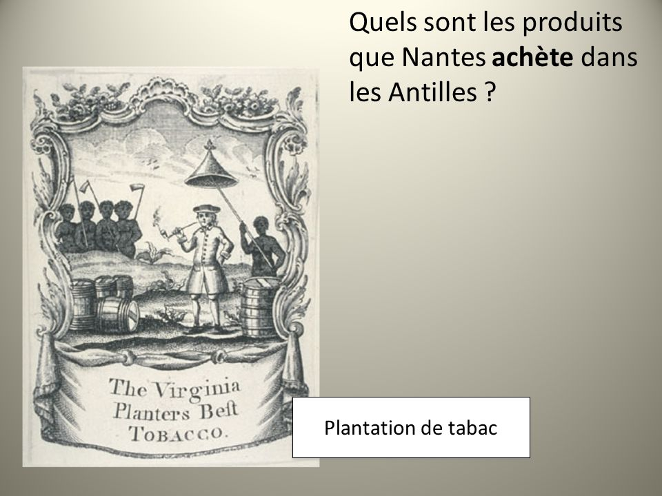 Quels sont les produits que Nantes achète dans les Antilles