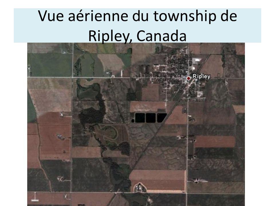 Vue aérienne du township de Ripley, Canada