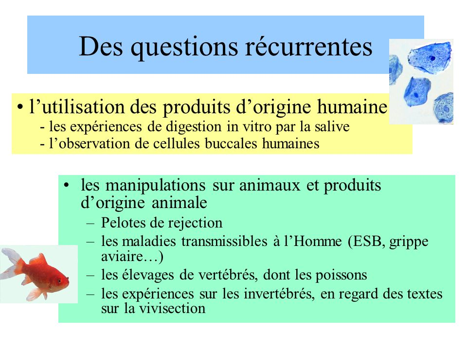 Des questions récurrentes