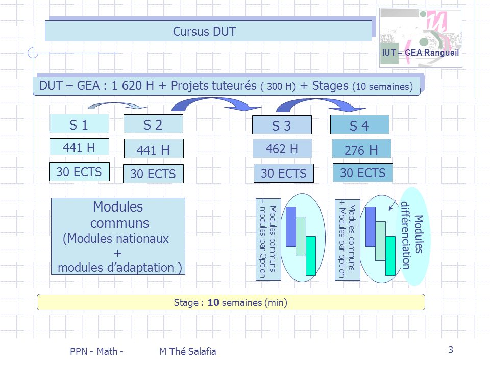 S 1 S 2 S 3 S 4 Modules communs Cursus DUT