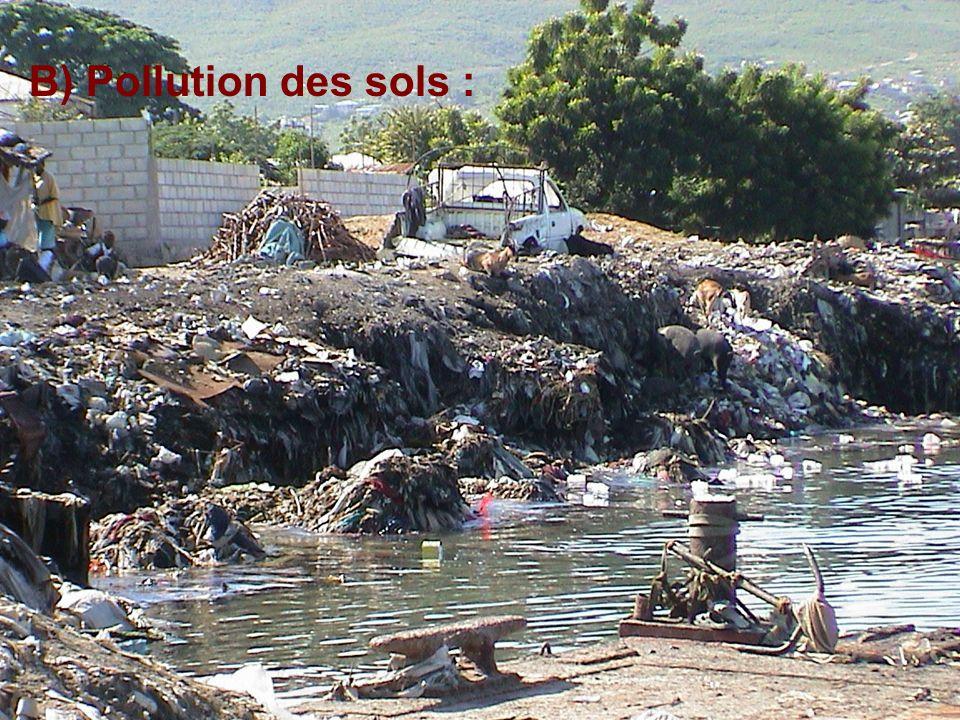 B) Pollution des sols : L'introduction de produits toxiques dans les sols comme nous montre cette photo.