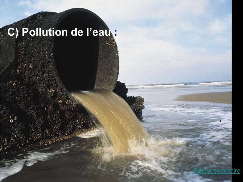 La pollution de l'eau C) Pollution de l'eau : Retour sommaire