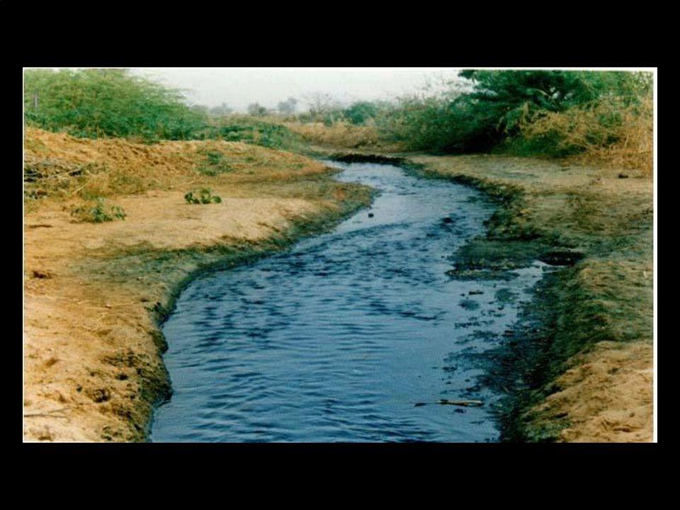 La pollution de l'eau et du sol sont liés et ont des effets nocifs
