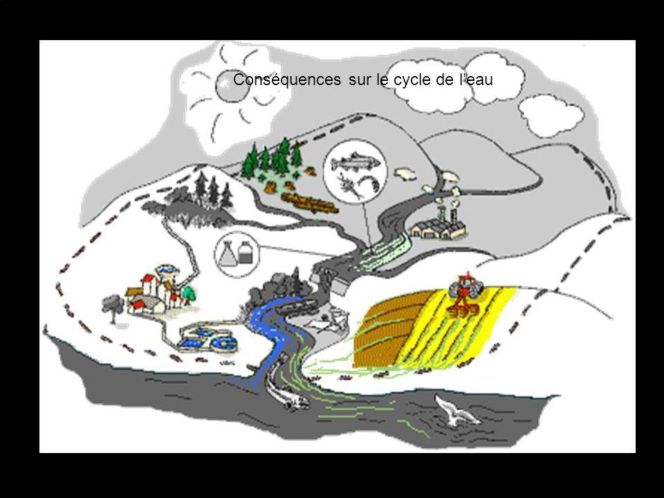 Conséquences sur le cycle de l'eau