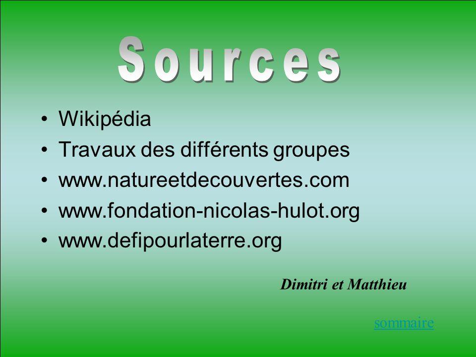 Sources Wikipédia Travaux des différents groupes