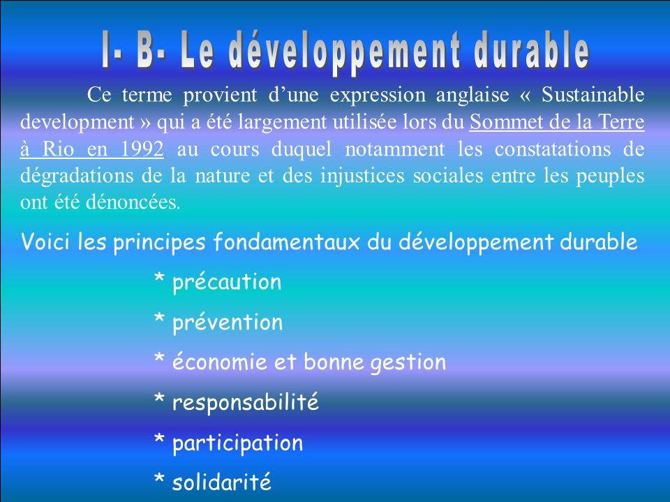 I- B- Le développement durable
