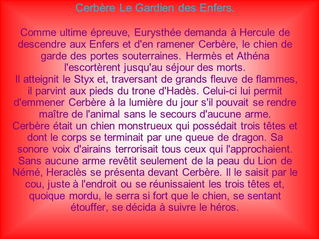 Cerbère Le Gardien des Enfers.