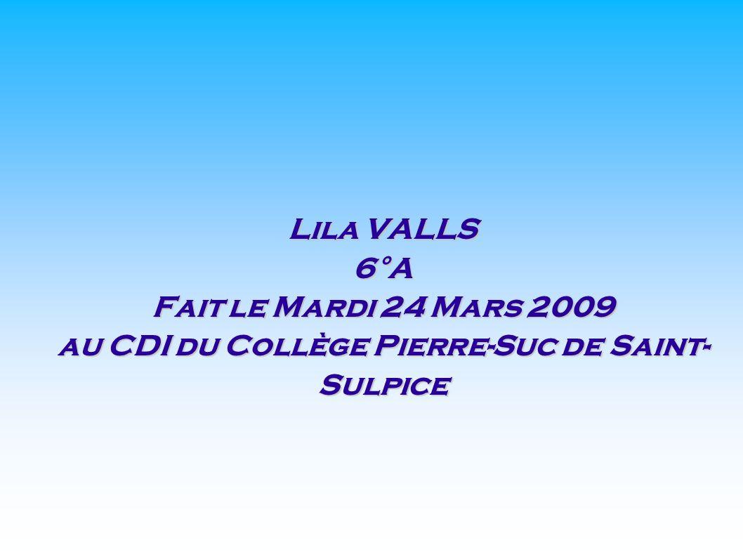 au CDI du Collège Pierre-Suc de Saint-Sulpice