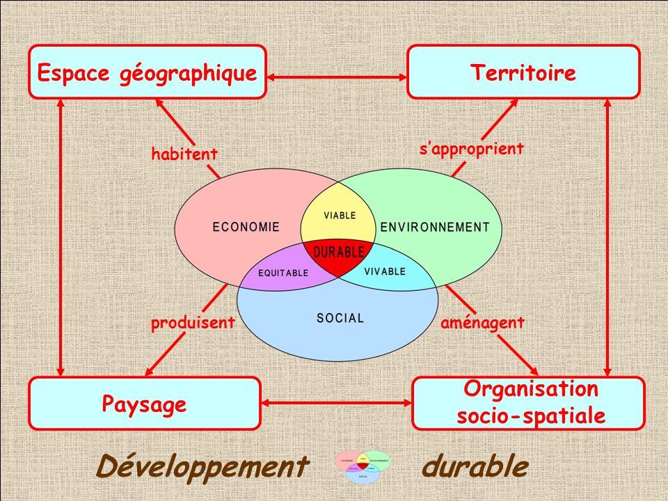 Organisation socio-spatiale