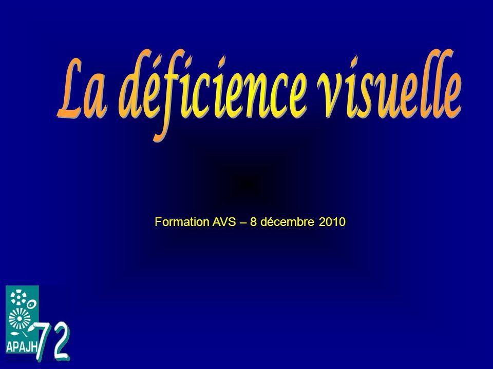 La déficience visuelle