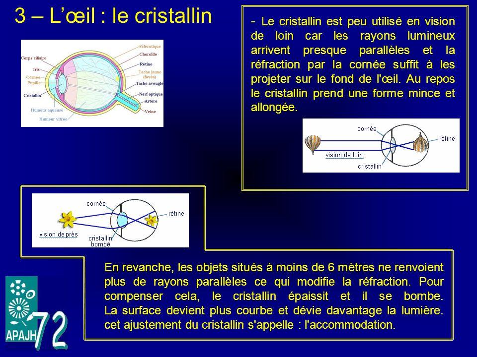 3 – L'œil : le cristallin